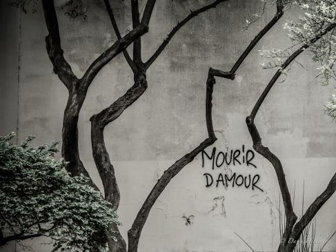 Mourir D'Amour