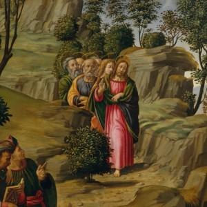 John-the-Baptist-bearing-witness_MetMuseum Granacci (3)