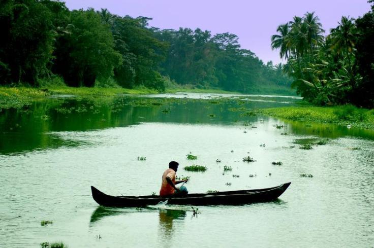 Backwaters at Kottayam, Kerala